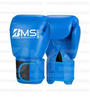 Thai Boxing Gloves