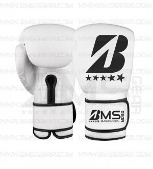 Evolution Boxing Gloves